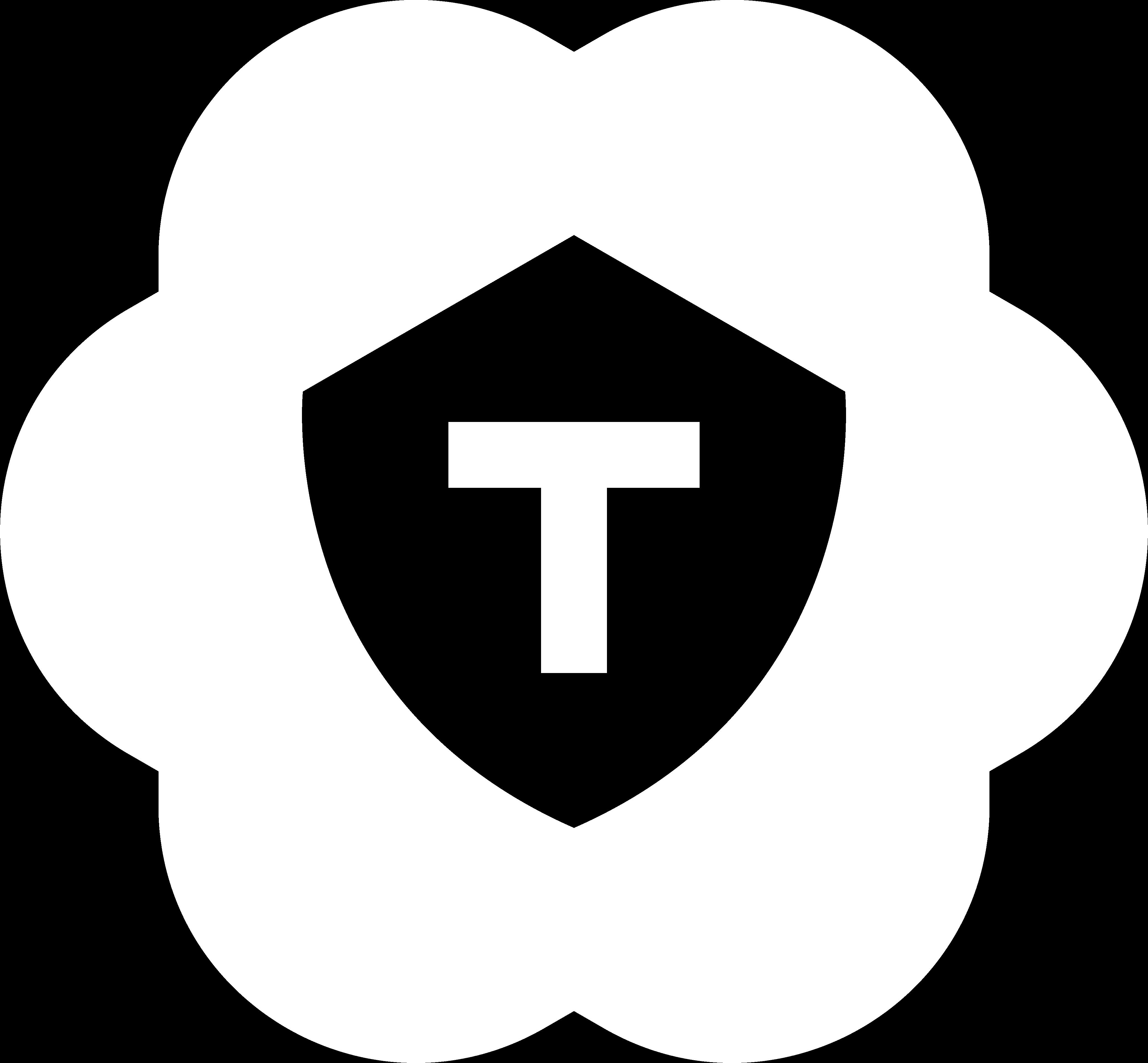 TOP Security Support Portal voor professionals